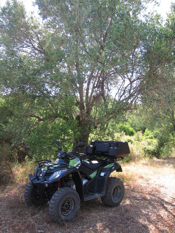 Alonissos ATV Motor