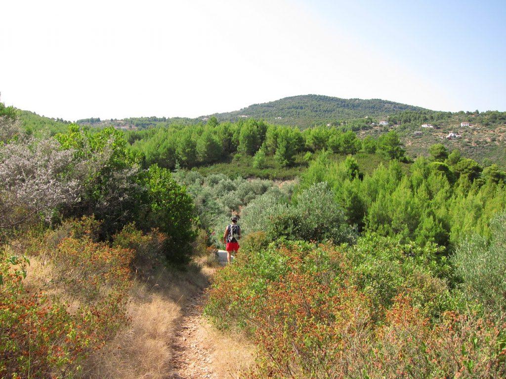 Alonissos'da yürüyüş parkuru