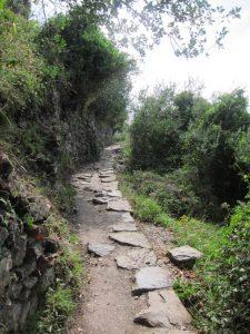 Vernazza-Corniglia yolu