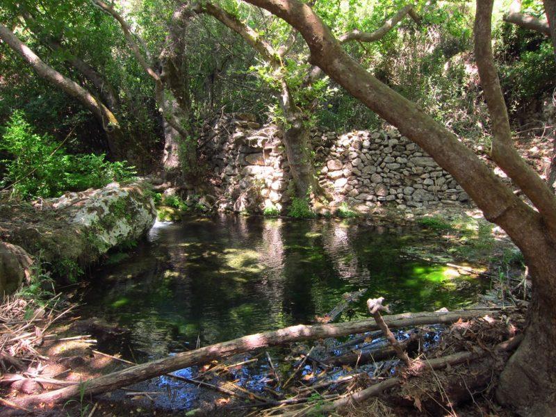 Mylopotamos gölet