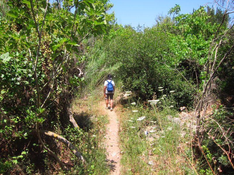 Kythira adası Mylopotamos yürüyüş yolu