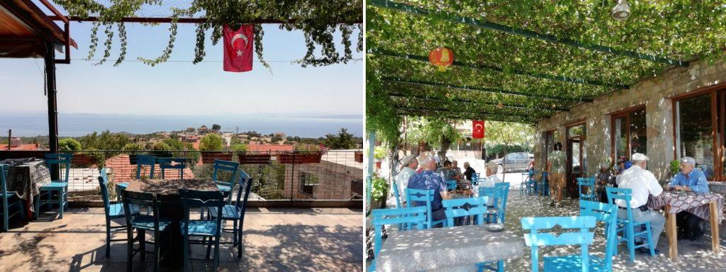 kozlu köyü kahve
